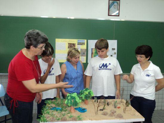 Você está vendo imagens do artigo: Biomas Brasileiros
